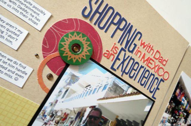 Shopping Experience (closeup 1)